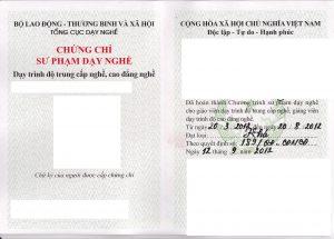 Chung-Chi-Su-pham-Cao-Dang-THCN